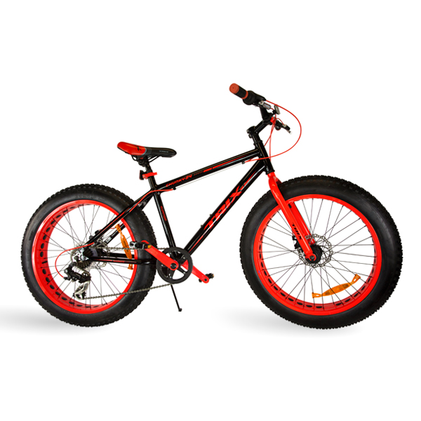 Image result for big bicycles
